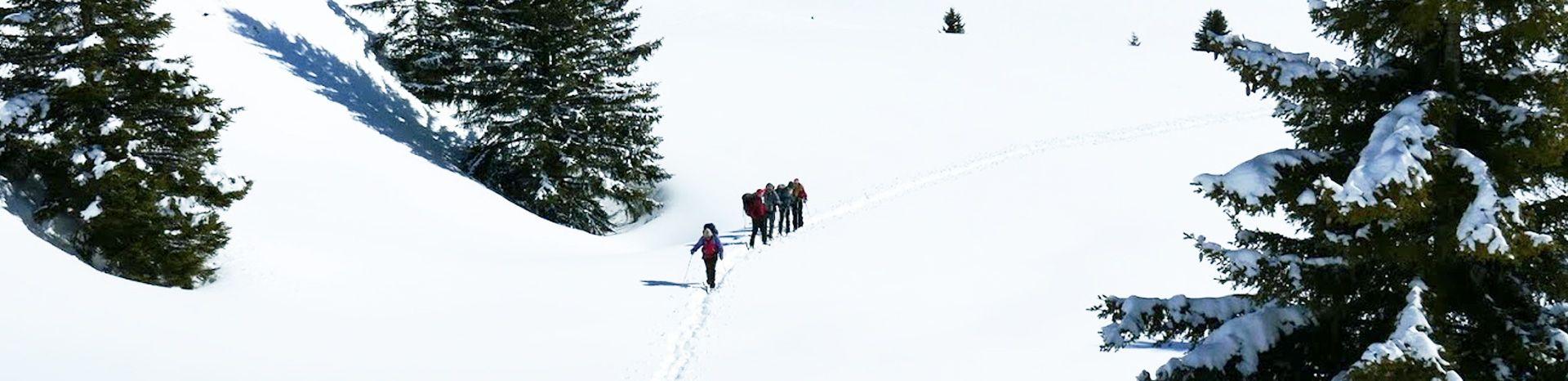 Personnes randonnant en raquettes dans la neige