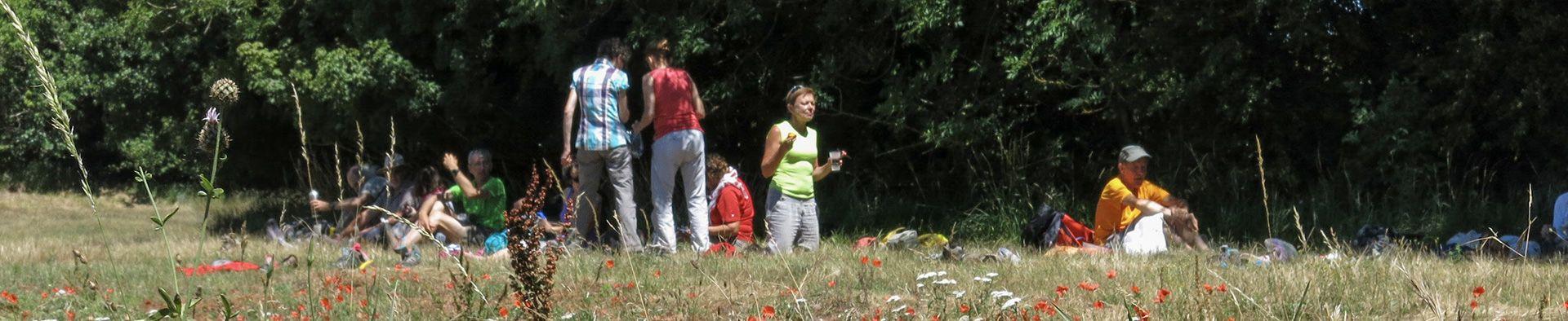 Randonneurs en pause dans un champ de coquelicots