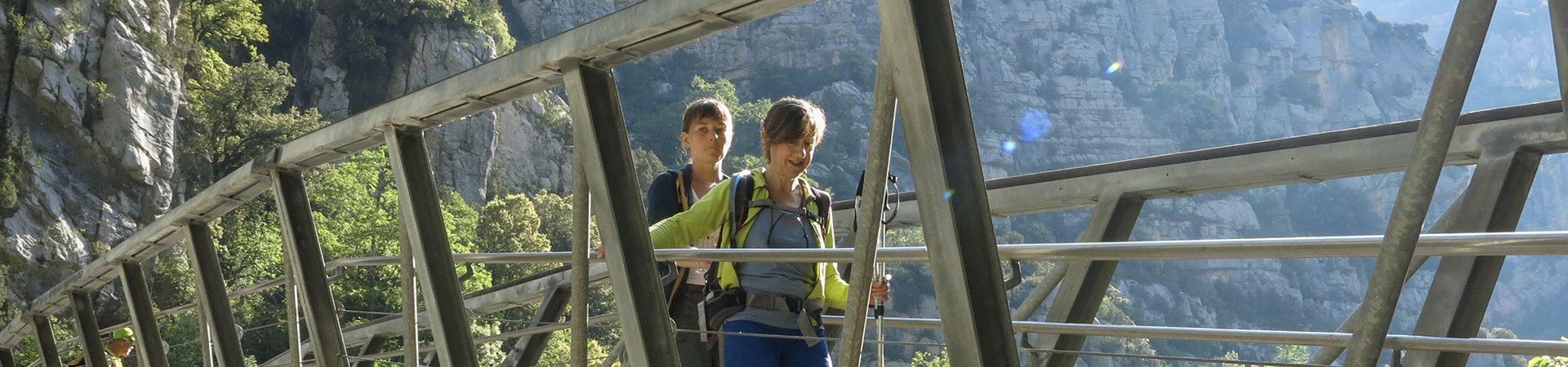 Randonneuse en aidant une autre à traverser un pont dans la montagne