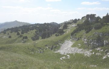 Crêt de la Neige, photo Wikipédia