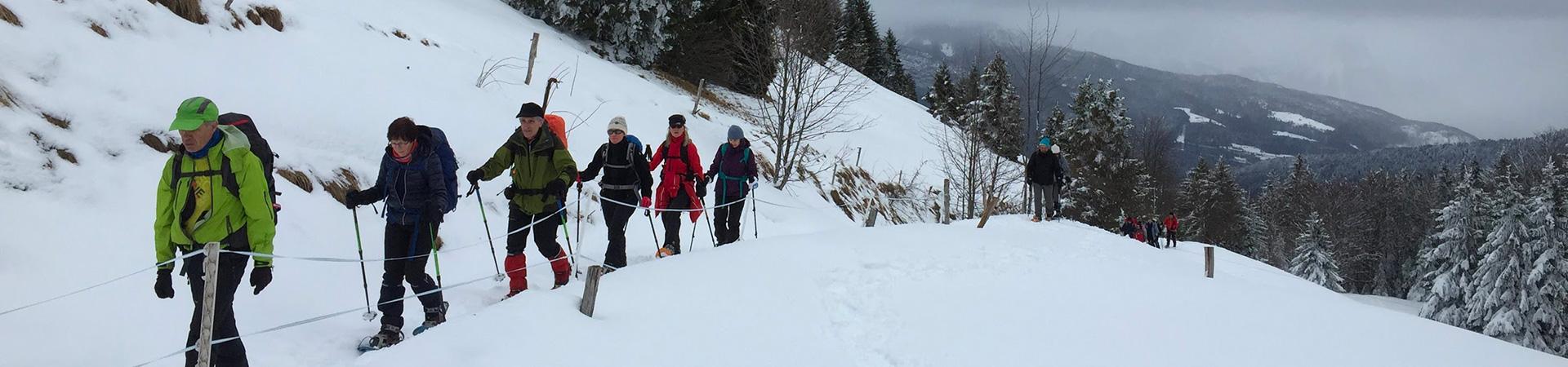 C'est à Lescheraines que le groupe de 16 personnes se regroupe pour ensuite se garer au-dessus d'Arith, au parking de Montagny. Quelques flocons accompagnent nos pas mais au sol, la couche de neige est fine.